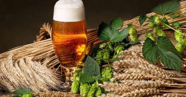Relația dintre consumul de alcool și alimentație