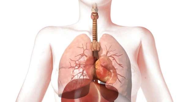 papiloame și condiloame pe colul uterin papiloame pe gât ce să faci forum