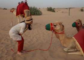 Turist in Dubai: Secrete si trucuri pour les connaisseurs
