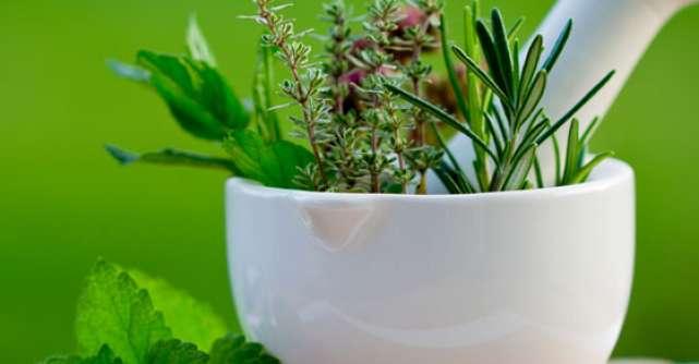 5 Remedii naturiste ale caror proprietati trebuie sa le cunosti