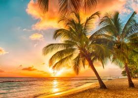 Trei lecții de viață prețioase de la locuitorii insulei Barbados