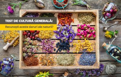 Test de cultura generala: Recunosti aceste daruri ale naturii?
