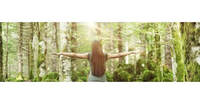 10 mesaje despre o conștiință mai înaltă de la James Redfield