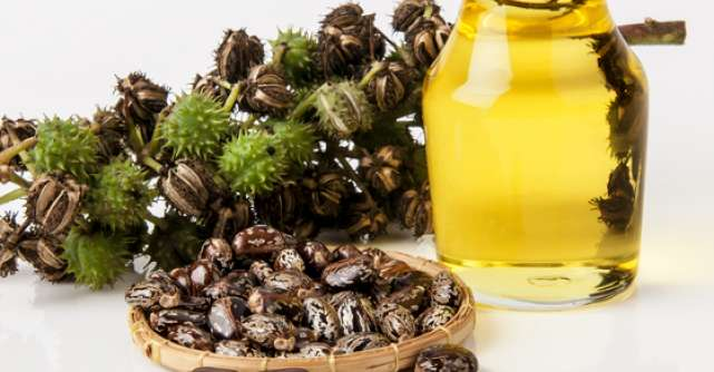 Minunile uleiului de RICIN