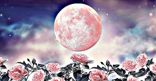 Evenimentele astrologice din februarie 2021. Universul ne ghidează și ne vindecă inimile rănite