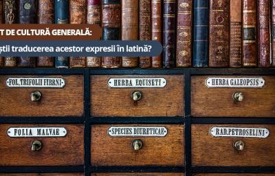 Test de cultura generala: Tu stii traducerea acestor expresii in latina?