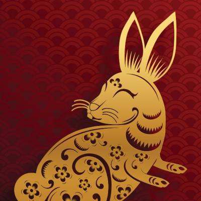 2022, Anul Tigrului de Apa: Horoscop chinezesc pentru zodia Iepure