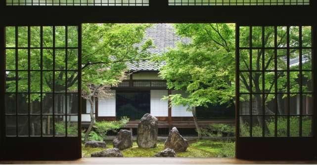Obiecte și decorațiuni pentru o atmosferă zen în casă