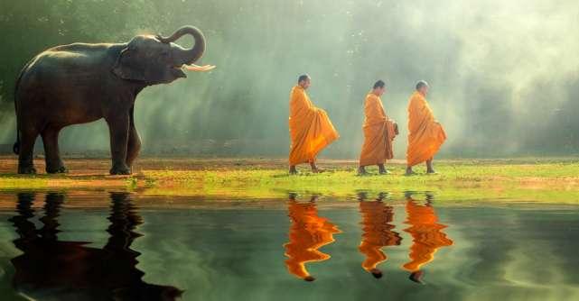 7 Obiceiuri budiste simple care iti vor schimba viata