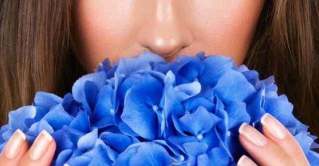 5 Produse NATURALE care iti vor RASFATA simturile