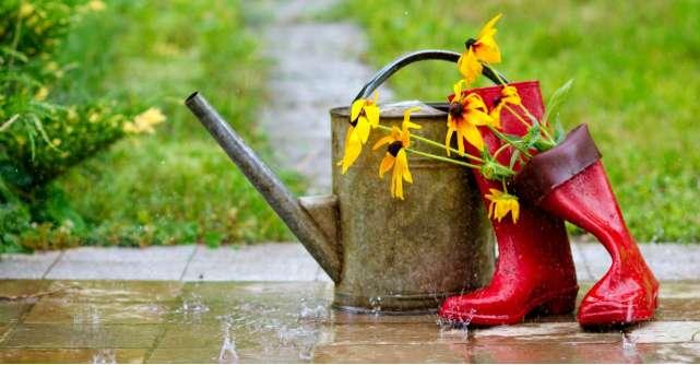 Ce cizme de ploaie se potrivesc in orice tinuta