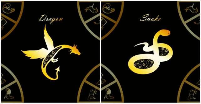 Horoscop chinezesc pentru Dragon si Sarpe in 2020