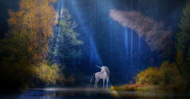 Iubitul unicorn, specie pe cale de disparitie
