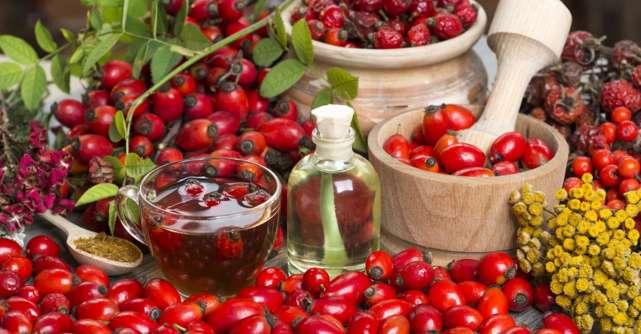 Măceșele pentru sănătate: 5 rețete naturiste de preparat acasă