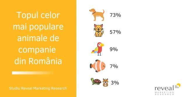 Pandemia ne-a apropiat de animăluțe! 2 din 10 româniși-au cumpărat un animal de companie în starea de urgență