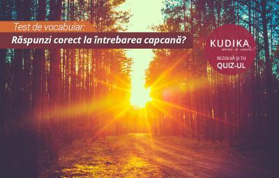 Test de vocabular: Raspunzi corect la intrebarea capcana?
