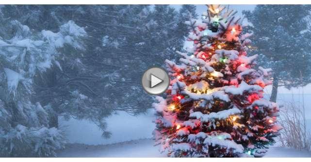 Video: Imparte Craciunul in acest an. Clipul EMOTIONANT inspirat din realitate
