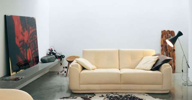 Piese de mobilier moderne, din piele