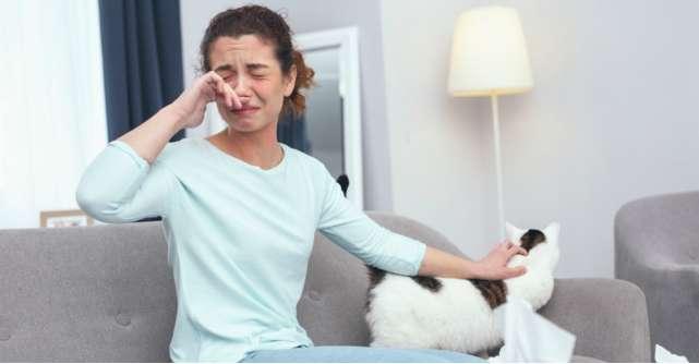Cum scapi de alergenii din locuinta ta: 5 cauze si 10 sfaturi