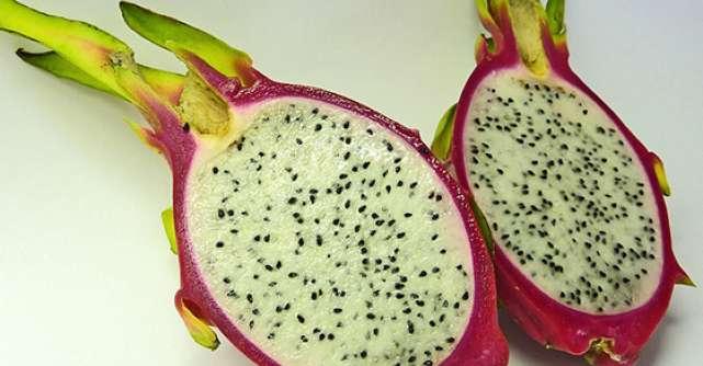 Fructul de cactus sau MEDICAMENTUL cu tepi: beneficii in sanatate