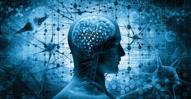 Curiozităţi despre creier pe care nu le ştiai