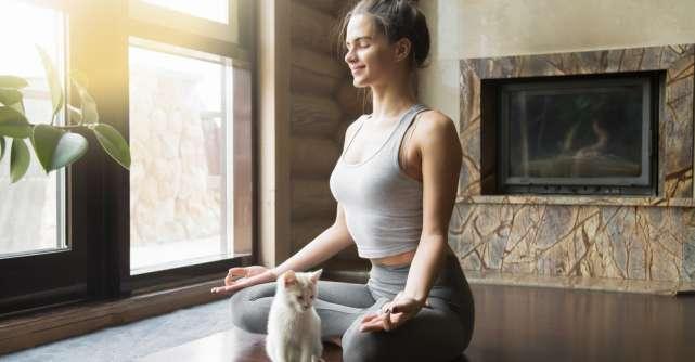 Top 5 cărți despre meditație și mindfulness pentru echilibrul interior, în contextul actual