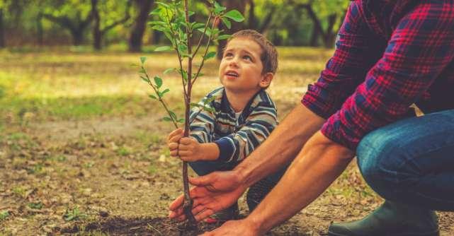 Copiii și mediul înconjurător: de ce este important să învețe de mici să protejeze natura