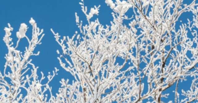 Imagini de basm cu Iarna!