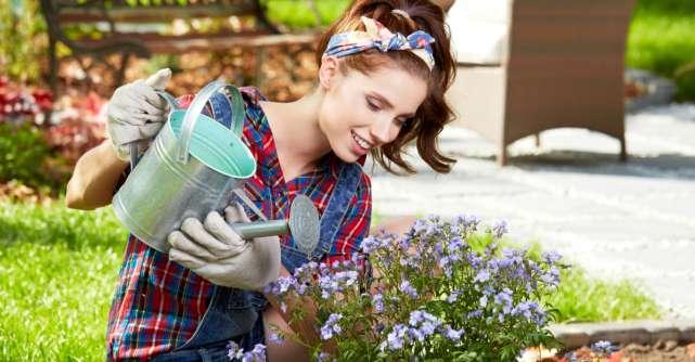 Cum să ai grijă de grădina ta cu doar 6 unelte de grădinărit!