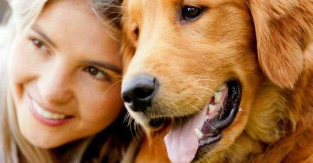 10 motive stiintifice uluitoare pentru a detine un caine