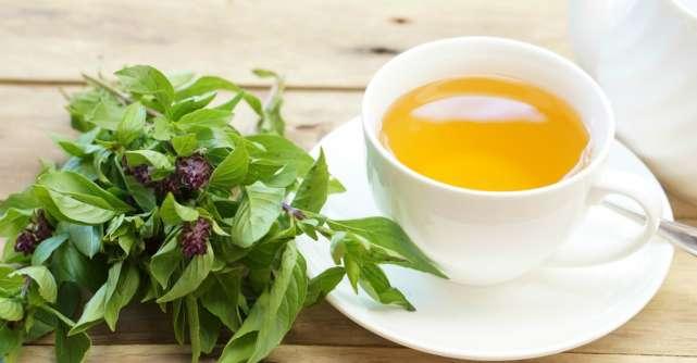 Care sunt indicațiile terapeutice are ceaiului de busuioc