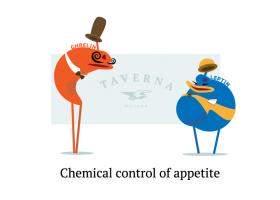 Grelina si leptina: Cum poti influenta hormonul foamei si pe cel al satietatii?