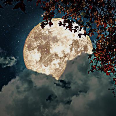 Luna Plină în Pești din septembrie vine pentru a ne conecta la energia divină a Universului