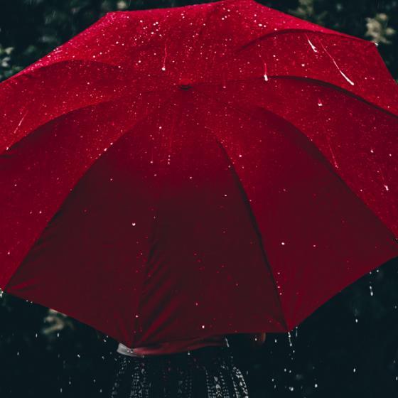 8 modele de umbrele șic pentru o lady care ține la ținuta sa și când plouă
