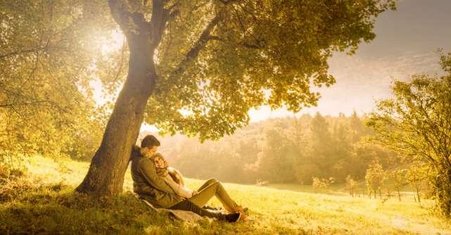 Cum functioneaza terapia de cuplu