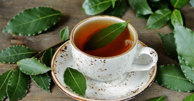 Ceaiul de frunze de dafin: Beneficii pentru sanatate