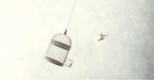 Părerea lui Radu: Admir capacitatea oamenilor de a se simți liberi
