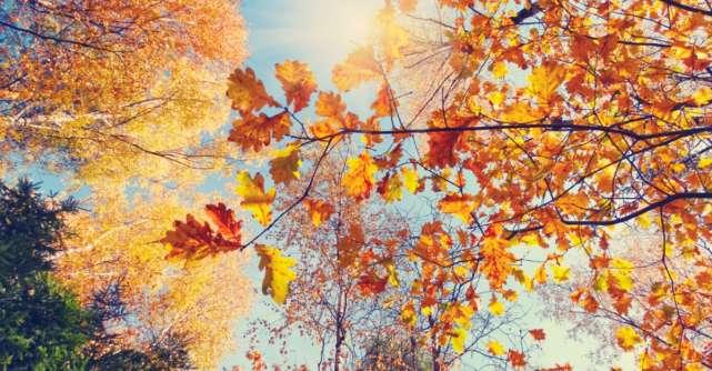15 Citate despre toamnă care să îți inspire sufletul și să îți bucure inima
