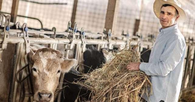 Danone România continuă investițiile