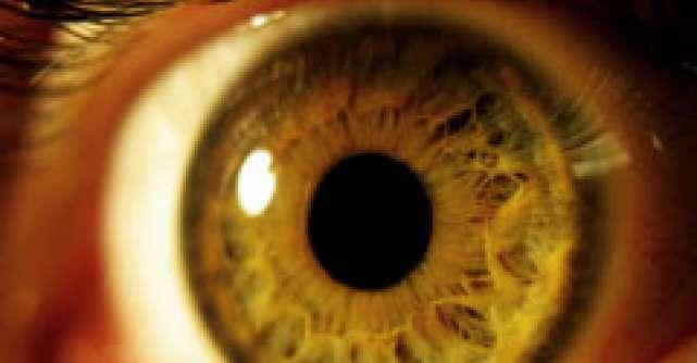 Ochiul bionic poate reda orbilor vederea