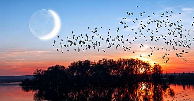 Luna Nouă de pe 6 octombrie vine pentru a ne ajuta să salvăm relații și să descoperim pacea în interiorul nostru