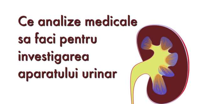 Analize medicale pentru RINICHI
