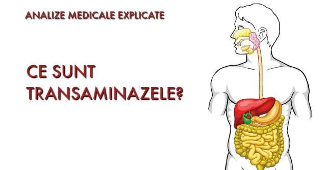 Ce sunt TRANSAMINAZELE? Analize medicale explicate
