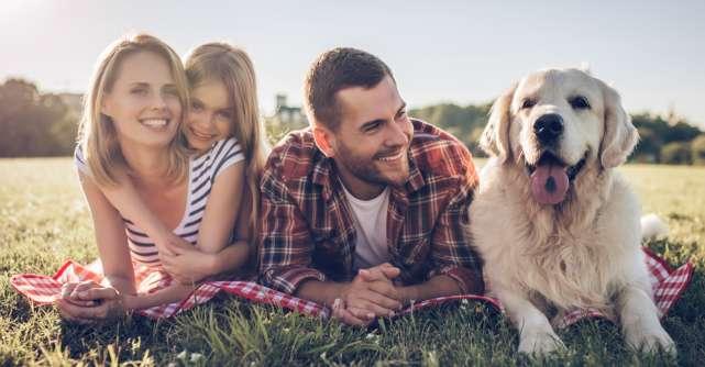Ce trebuie să știi înainte de a-ți lua un animal de companie