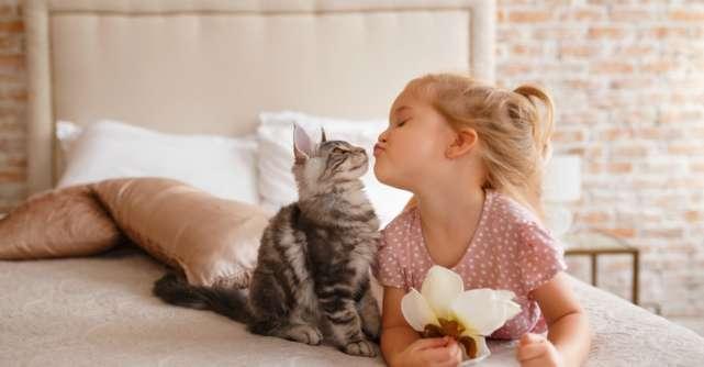 Relația ciudată pe care specialiștii au descoperit-o între om și animalul de companie