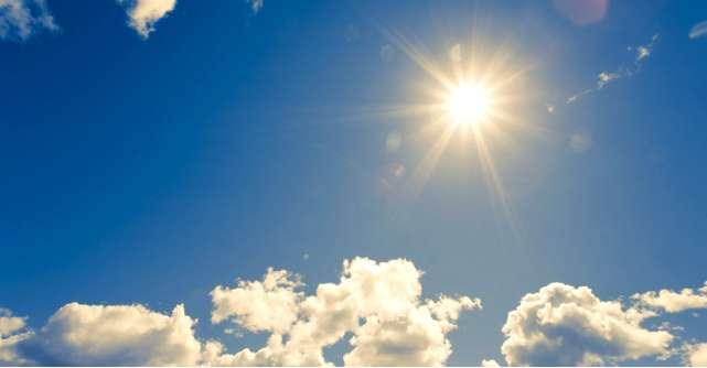 4 surse naturale de vitamina D pentru o sanatate de fier