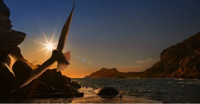 Cele 7 trasaturi de caracter ale unui spirit liber
