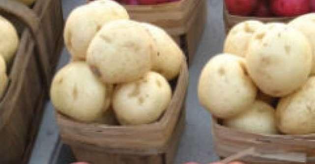 Cartoful - Alimentul incasilor si al indienilor Aymara