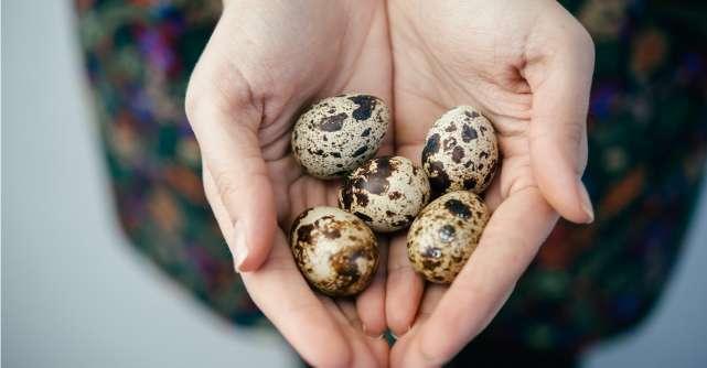 5 motive convingătoare să consumi ouă de prepeliță