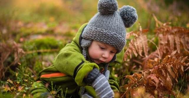 Protejarea mediului – idei de activități cu copiii